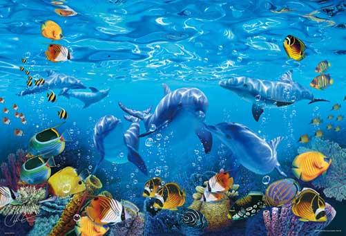 壁纸 海底 海底世界 海洋馆 水族馆 桌面 501_341